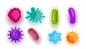 germs - bacteria